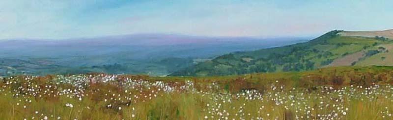 Jantien Powell - Landscapes