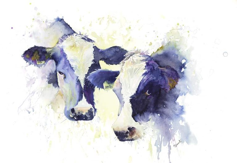 2 Cows Watercolour