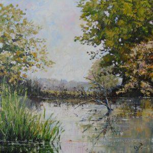 Pentwyn Pond