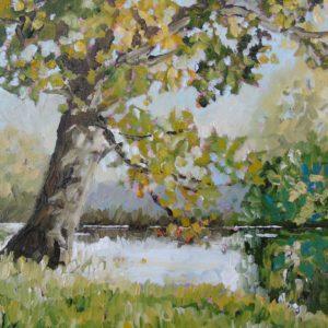 Pentwyn Pond – 2