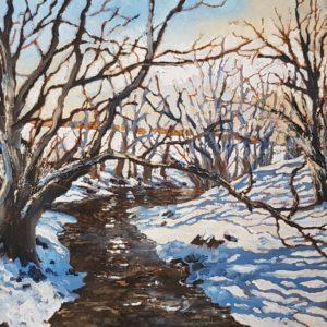 Ffrwd Brook in Winter