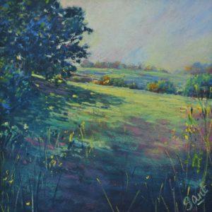 Fields below Banal Lane
